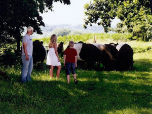 Kids With Cows